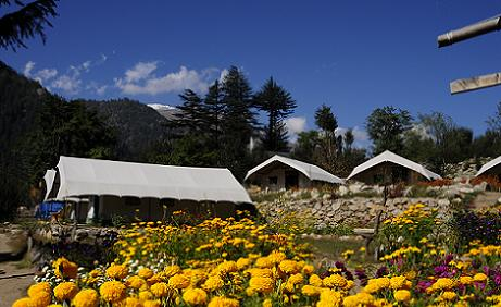 Camping in Sangla Valley,Adventure camping in Himachal Pradesh,Sangla Valley